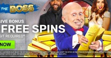 bgo casino free