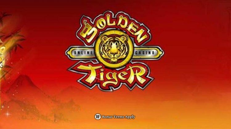 Golden Tiger 1140x428