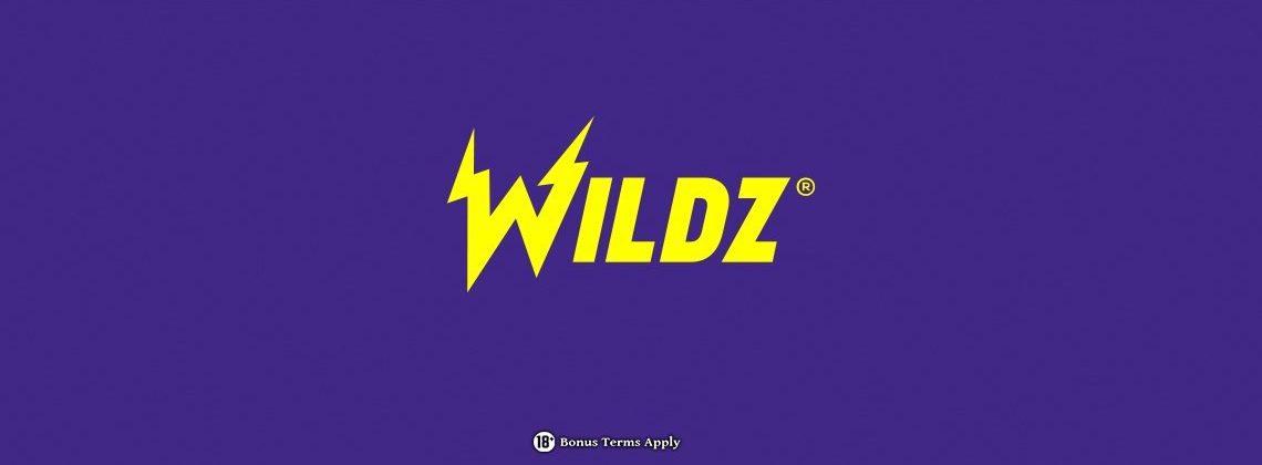 Wildz 1140x428